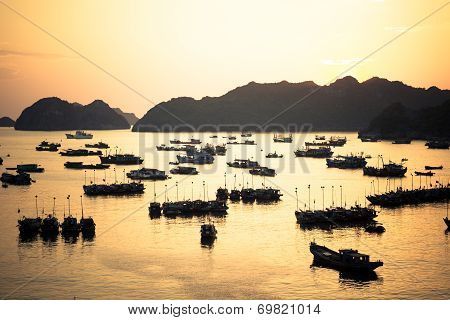 Cat Ba port sunset