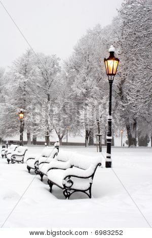 morning in winter park - bratislava