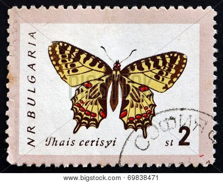Postage Stamp Bulgaria 1962 Eastern Festoon, Butterfly