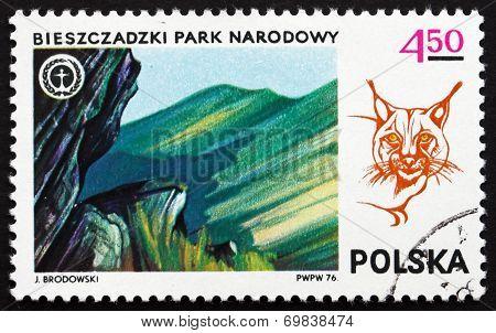 Postage Stamp Poland 1976 Bieszczadzki Park And Lynx