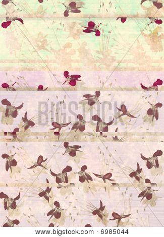 Pattern Of Butterfly Flowers