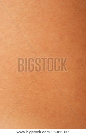 Human Skin