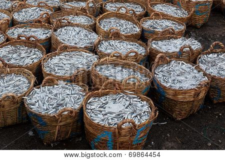 Fish baskets at fish port at Binh Ba island, Cam Ranh City, Khanh Hoa Province, Vietnam.