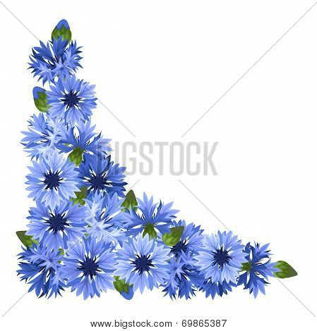 Blue cornflowers corner. Vector illustration.
