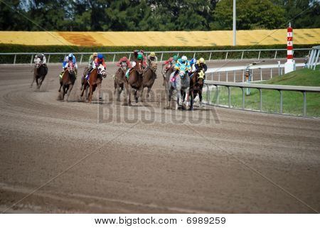 Horses Racing Through the Final Turn