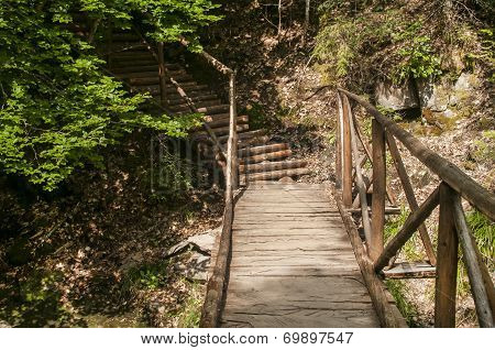 Wooden footbridge in mountain