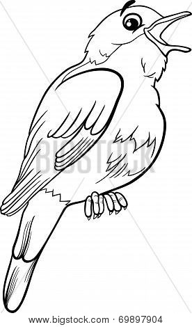 Nightingale Bird Coloring Page