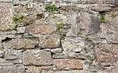 picture of stonewalled  - Antique natural stonewall old stones in different sizes