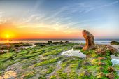 foto of lien  - Strange rocks and moss in the morning at Co Thach beach  - JPG