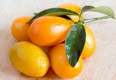 pic of kumquat  - just picked kumquat with leaf  over wooden baclground - JPG