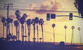 foto of light-pole  - Vintage sunset picture of palms and poles on street against sun - JPG