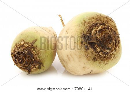freshly harvested white beets on a white background