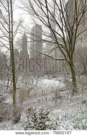 Central Park in snow, Manhattan, New York