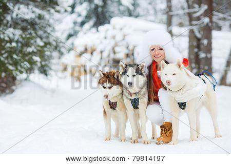 Portrait of a beautiful woman with Siberian huskies - Husky.