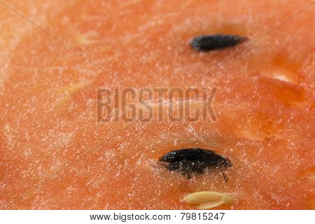 The Skin Of The Watermelon Flesh