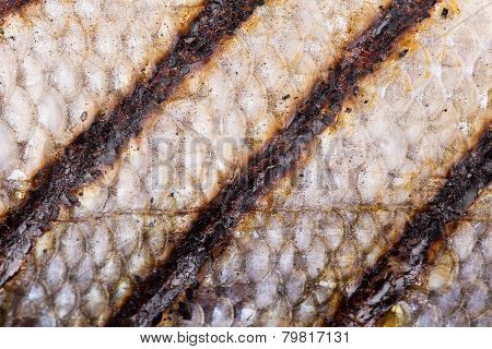 grilled fish scales