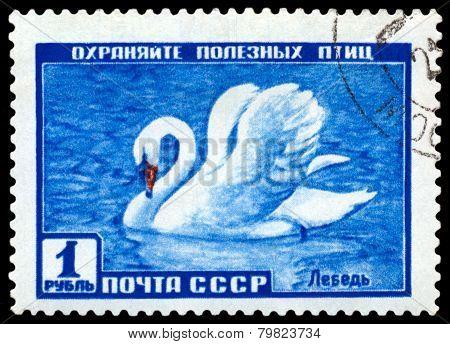 Vintage  Postage Stamp. Swan.