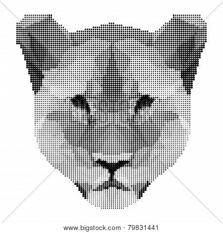 Abstract Monochrome Lion Portrait Of Circles Isolated On White Background