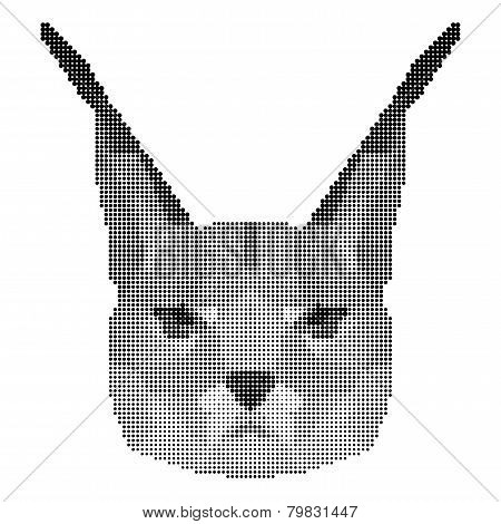 Abstract Monochrome Lynx Portrait Of Circles Isolated On White Background