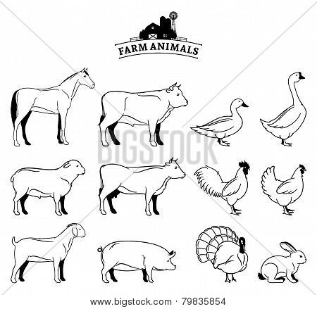 Vector Farm Animals Isolated on White