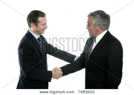 Adult Businessman Handshake Expertise Portrait