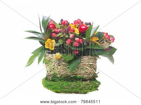 ornamental flowerpot isolated