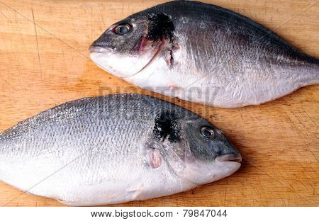 Two Uncooked Fishes Dorado On Wood Background
