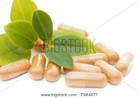 Green Sprout From Pills