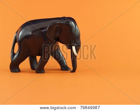 Elephant on an orange background