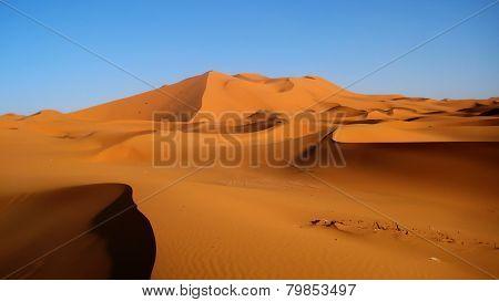 Golden Sand Dunes (Sahara)