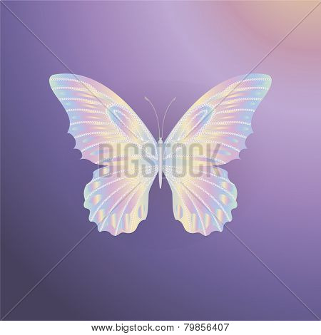 Pearl Lace Butterfly On Purple Background