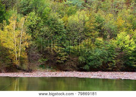 Mountain lake pollution