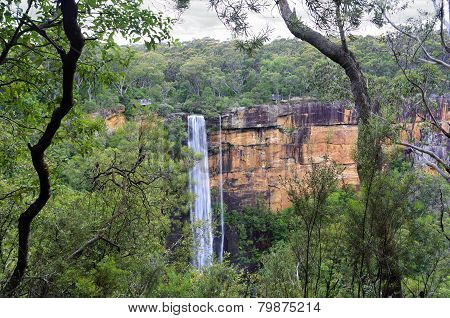 Australian Bush View Of Fitzory Falls