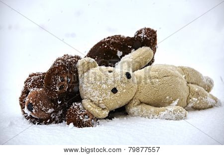 Stuffed Animal Toy Teddy Bear Lost By Children In Winter Storm Waiting Alone In The Cold Freezing Sn