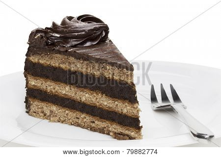Piece of chocolate cake on white plate,  isolated on the white background.