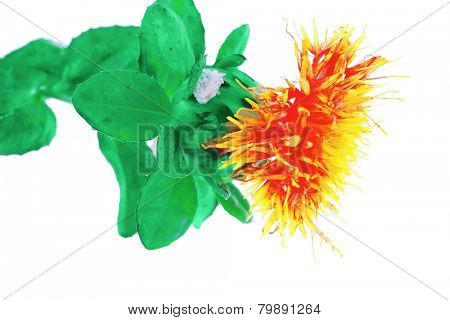 small gold flower with leave over white background