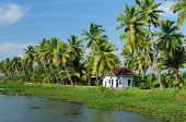 stock photo of alleppey  - Coco trees reflection and house at back waters of Kerala India - JPG