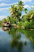 image of alleppey  - Coco trees reflection and beautifoull house boat at back waters of Kerala India - JPG