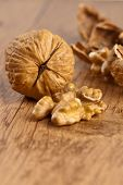 picture of walnut  - Walnut and a cracked walnuts - JPG