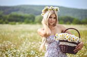 picture of chamomile  - Beautiful girl  - JPG