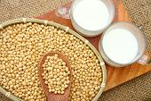 pic of soybean milk  - Soybean name Glycine max Fabaceae family rich protein acid amin vitamin a nutrition product to process soymilk this soy milk supply collagen estrogen for woman a kind delicious beverage - JPG