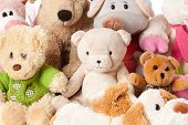 picture of stuffed animals  - the photo shot of a stuffed animals - JPG