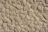 picture of feldspar  - The texture of the processed gray granite closeup - JPG
