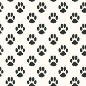 picture of animal footprint  - Seamless pattern with animal footprint texture - JPG