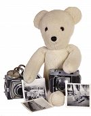 picture of stuffed animals  - A stuffed animal toy teddy bear with old cameras and black and white photographs of a young boy on white background - JPG