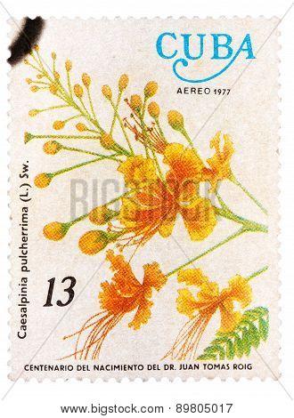 Stamp printed in Cuba shows image of a Caesalpinia pulcherrima