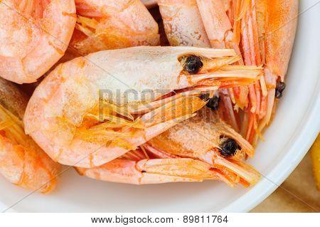 Prepared boiled shrimps macro, extreme close up