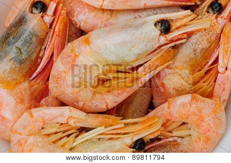 Prepared boiled shrimps macro, extreme close up