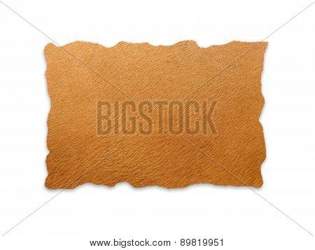 Banteng Skin Isolated
