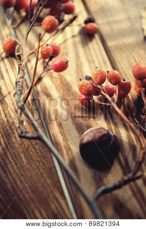 Rowan and castan on vintage wooden boards autumn background concept